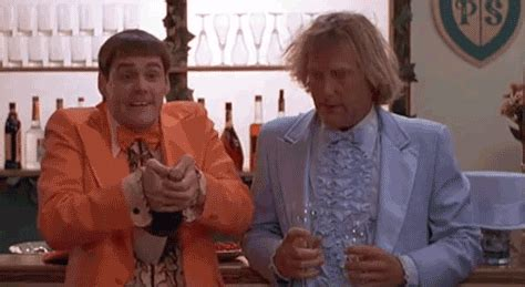 Dumb And Dumber Bathroom Animated Gif by Dumb And Dumber Owl Gif Find On Giphy