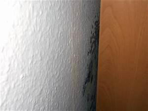 Schimmel An Möbeln : schimmel im wohnzimmer sachverst ndige zeigt wo es schimmelt ~ Markanthonyermac.com Haus und Dekorationen