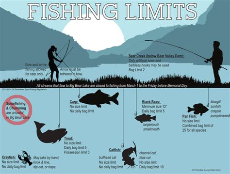 Big Bear Boat Rental Discount by Big Bear Lake Fishing News Service Reports Qr Code