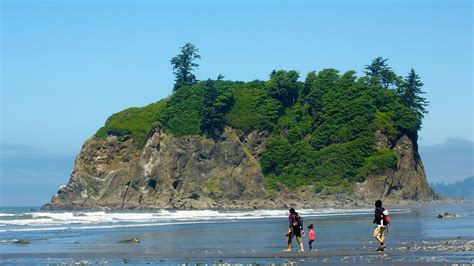 Tile Deals by Ruby Beach In Forks Washington Expedia
