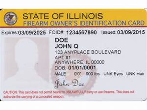 Chicago Guns Matter - Becoming a Gun Owner in Illinois