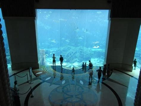aquarium viewed from the stairs picture of atlantis the palm dubai tripadvisor