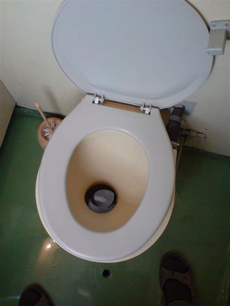 s arm gets stuck in toilet wired