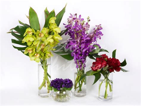 Step Van Fresh Cut Flowers. Lpg Signs Of Stroke. Palate Signs. Wet Chemical Signs. Right Signs Of Stroke. 3 Line Signs. Meaning Sri Lanka Signs. Restlessness Signs. Yin Deficiency Signs