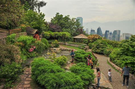 Jardin Japones Parque Metropolitano De Santiago Foto Por