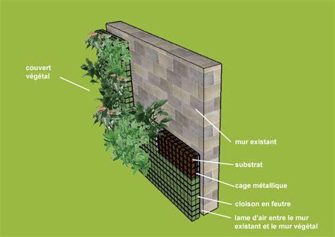 un mur v 233 g 233 tal c est quoi mur mure vegetal