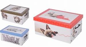 Karton Pappe Kaufen : 2er aufbewahrungs box mit deckel katzenmuster kiste karton schachtel pappe ~ Markanthonyermac.com Haus und Dekorationen