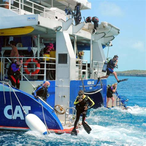Catamaran Accident In Bahamas by Aqua Cat Dive And Cruise