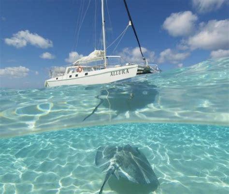 Catamaran Rental Grand Cayman by Allura Catamaran George Town 2018 All You Need To Know