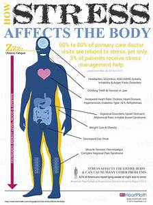 How Stress Affects the Body