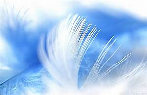 Signs Of When You Are Hearing, Seeing, And Feeling Angels ...