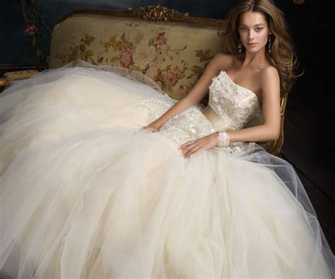 Tulle Dress Picture Collection  Dressed Up Girl. Corset Wedding Dresses Online. White Wedding Dresses With Bling. Wedding Dress Style Gallery. Winter Wedding Dresses With Muffs. Beautiful Wedding Dresses In London. Mermaid Wedding Dresses Las Vegas. Red Wedding Dress Makeup. Winter Wedding Dresses Guest