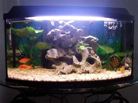decoration aquarium 60 litres