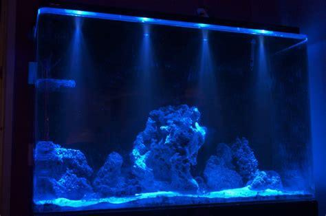 metal halide aquarium lighting on winlights deluxe interior lighting design