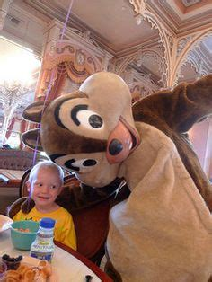 Chip N Dale Costume by 1000 Images About Chip And Dale Costume Mascotshows