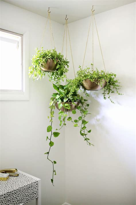 Indoor Garden Idea  Hang Your Plants From The Ceiling. Stone Floors. Patio Dining Sets. Bohemian Living Room. Lanier Roofing. Wood Carport. Art Deco Ceiling Fan. Wood And Metal Shelves. Step Stools