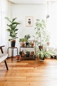 Jasmin Zimmerpflanze Pflege : 6408 besten dekoration decoration ideas deko ideen bilder auf pinterest das netz ~ Markanthonyermac.com Haus und Dekorationen