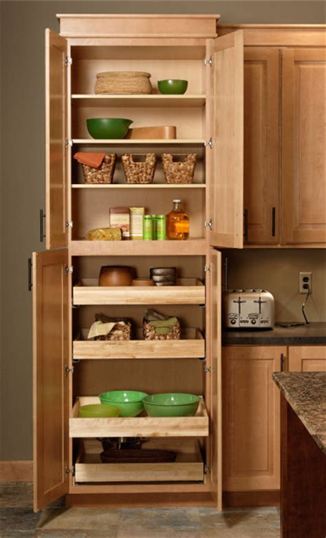 Kitchen Cabinets Organizers Pantry by Pantry Cabinet Cliqstudios Traditional