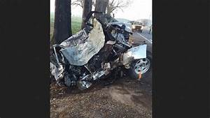 Police: 1 man dead after crashing into tree, catching ...