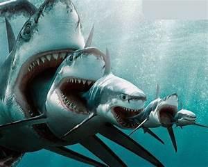 Conoce a todos los tiburones prehistóricos que han existido