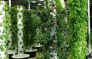 Pflanzen Bewässern Mit Plastikflasche : 1001 ideen zum thema vertikaler garten mit praktischen tipps ~ Markanthonyermac.com Haus und Dekorationen