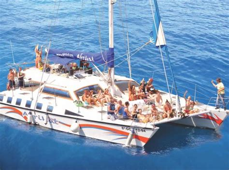 Catamaran Gran Canaria Tripadvisor by Afrikat Puerto Rico Spain Top Tips Before You Go