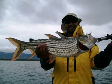 Jozini Tiger Fishing Boat Hire by Tiger Fishing Adventure Tiger Fishing Safaris Lake