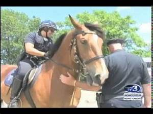 WNT Mounted Police Patrol Visits City View School - June ...