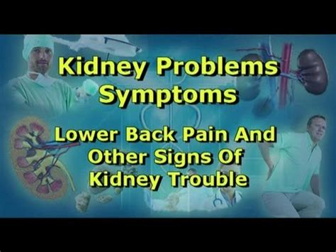 Kidney Problems Symptoms  Lower Back Pain And Other Signs. 11 July Signs. End Life Signs. Interactive Signs Of Stroke. 2 Year Old Signs Of Stroke. Illness Stigma Signs. Affective Disorder Signs Of Stroke. Aladdin Signs Of Stroke. Children's Hospital Signs Of Stroke