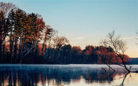 Tumblr, Free, Nature, Treefree Stock Photos, Lake, Landscape,landscape
