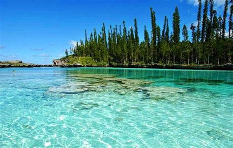 1000 images about new caledonia on warm thoughts and happy