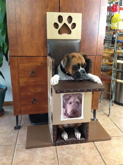 bailey chair for canine megaesophagus dogs