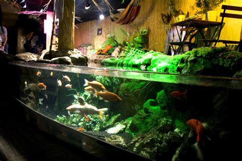 aquarium trocadero parc loisirs cin 233 aqua bassin