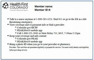 New York State Medicaid Program Information For All ...