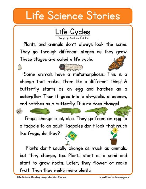 895 Best Science  Life Cycles Images On Pinterest  Life Cycles, Science And Elementary Science
