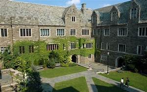 Transferring to SJU can be easy! - Hawk's Eye View
