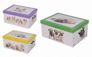 Karton Pappe Kaufen : 2er aufbewahrungs box mit deckel hundemuster kiste karton schachtel pappe ebay ~ Markanthonyermac.com Haus und Dekorationen