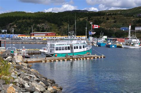 Bulls Bay Boats Facebook by Vandals Destroy Tour Boat In Bay Bulls Newfoundland