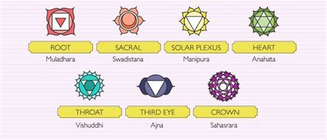 The 7 Chakras Explained In Infographics [infographic]  Daily Infographic