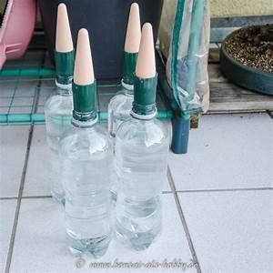 Pflanzen Bewässern Mit Plastikflasche : bew sserung von bonsai mit pet flaschen und tonkegel ~ Markanthonyermac.com Haus und Dekorationen