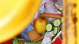 Maden Im Müll : maden in der m lltonne vorbeugen und bek mpfen mit hausmitteln wohnen ~ Markanthonyermac.com Haus und Dekorationen