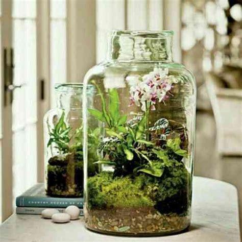 17 meilleures id 233 es 224 propos de terrarium pour plantes grasses sur terrarium