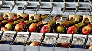 Crazy Food Processing Machines 2017 | Apples - YouTube