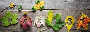 Basteln Im Herbst : basteln im herbst radio saw ~ Markanthonyermac.com Haus und Dekorationen