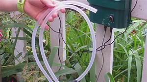 Pflanzen Bewässern Mit Plastikflasche : blumen pflanzen im urlaub automatisch giessen bew ssern mit solar balkonbew sserung youtube ~ Markanthonyermac.com Haus und Dekorationen