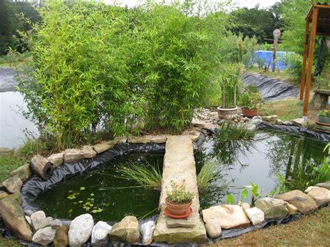 bassin exterieur poisson bassin exterieur poisson sur enperdresonlapin