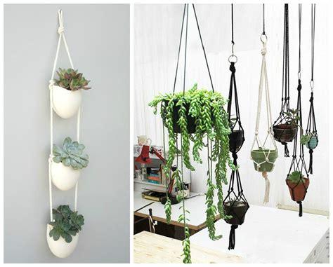 plantes d int 233 rieur d 233 corez avec des plantes vertes