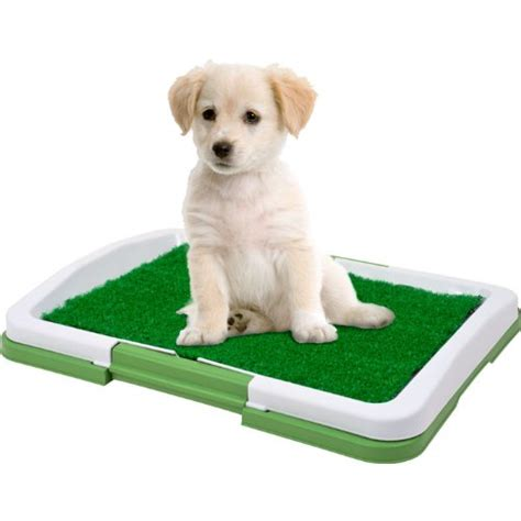 puppy potty trainer the indoor restroom for pets jpg