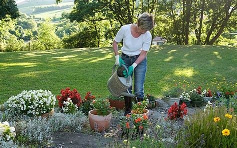 6 Albums To Do The Gardening To  Telegraph