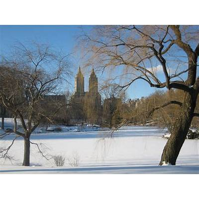 Weather in Central ParkWeddings Park New York